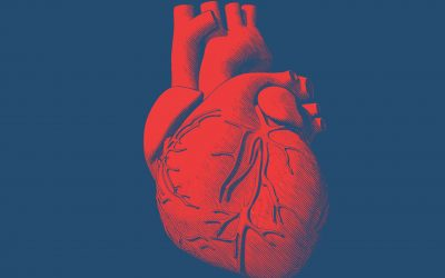 Study Links Weight History With Congestive Heart Failure